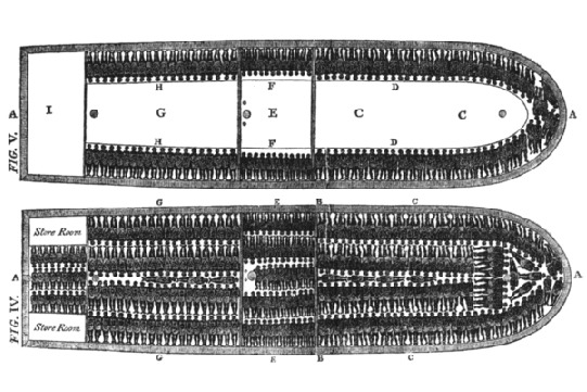 Layout of a Slave Ship
