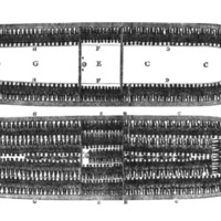 Layout of Slave Ship.png